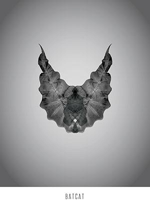 Image of Batcat af Ten Valleys