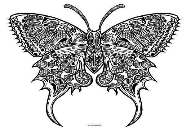 Image of Butterfly Fin af Ammar Keylani