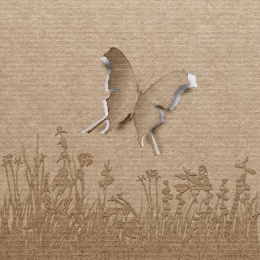 Image of   Butterfly af Jakub Stodulski