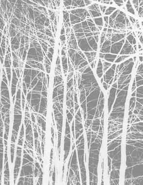 Image of   Cherrytree grey af Kirsten Stigsgaard