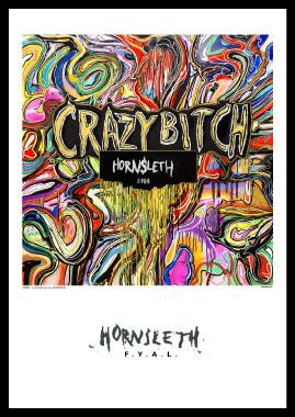 Image of   Crazy Bitch af Hornsleth, Print i glas og ramme, 50x70 cm