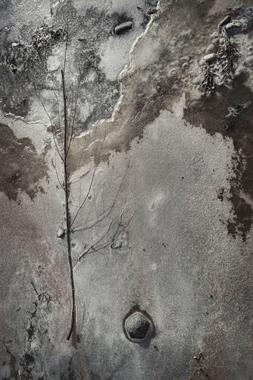 Billede af On Ice af Gustavo Orensztajn