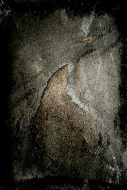 Image of   Prag Rødder 2 af René Roalf Jensen