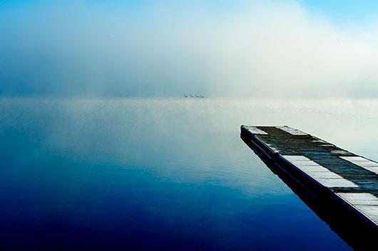 Image of   Morgen Svømning af David Foli