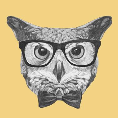 Ordinary Owl af Illux