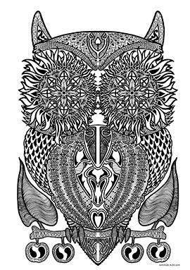 Image of Owl af Ammar Keylani
