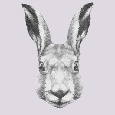 Image of   Ready Steady Rabbit af Illux