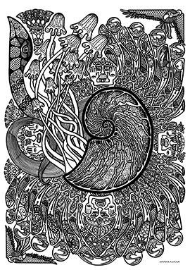 Image of Sea Shell Fin af Ammar Keylani