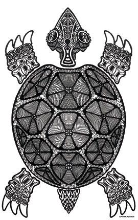 Image of Turtle af Ammar Keylani